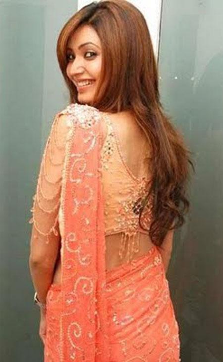 Stunning Saree Blouse Designs | Shanilau0026#39;s Corner