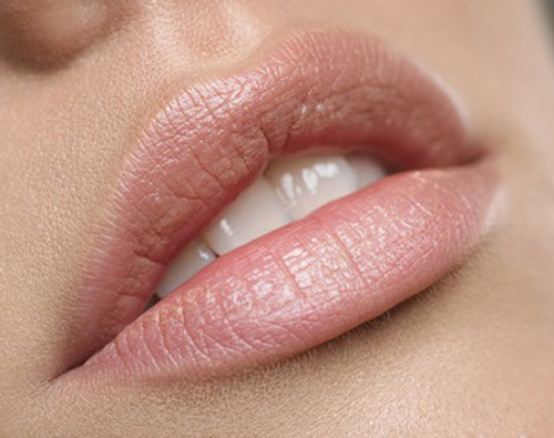 best-nude-lipstick-for-oliv